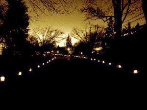 LightNight_121214A